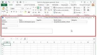 Il Riquadro documento si posiziona tra la barra multifunzione e l'area di lavoro
