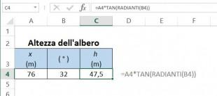 Come calcolare l'altezza dell'albero