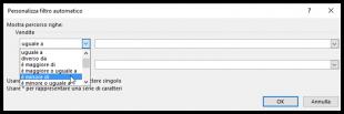 Filtro personalizzato di Excel