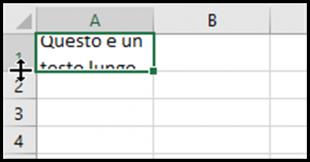Adattare l'altezza della riga contenente il testo a capo